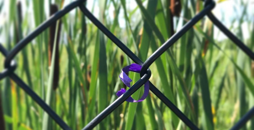 Ribbon tied the the fence outside Paisley Park